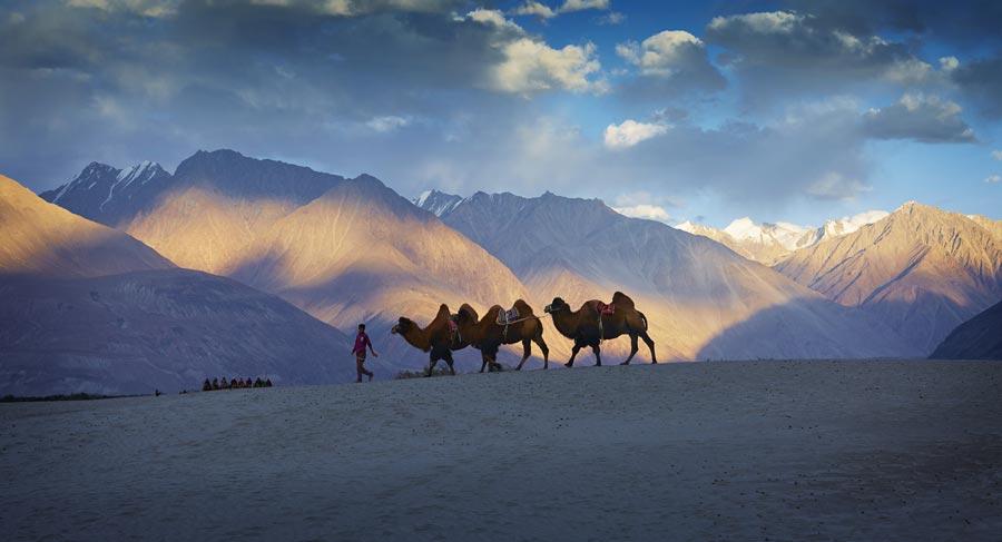 Le Notti Stellate del Ladakh