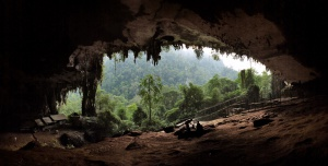 Mulu Caves